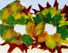 Autumn Leaf Masks