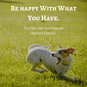 Life Lessons From Aesop's Fables _the dog and the shadow quotes