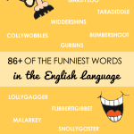 Funniest words in the English language