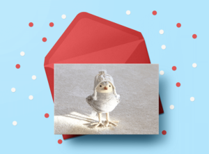 christmas pictures for greeting cards