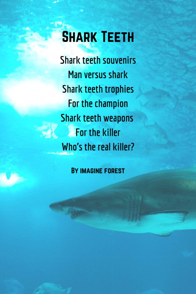 Sharks Teeth Poem - shark poems