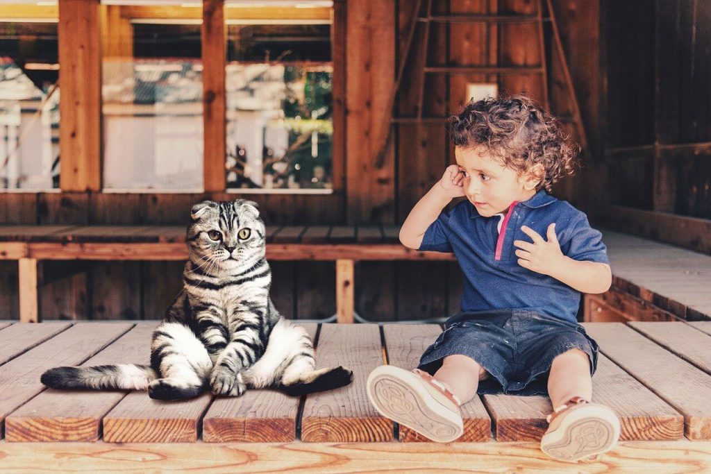 writing prompts for kids - kid and cat