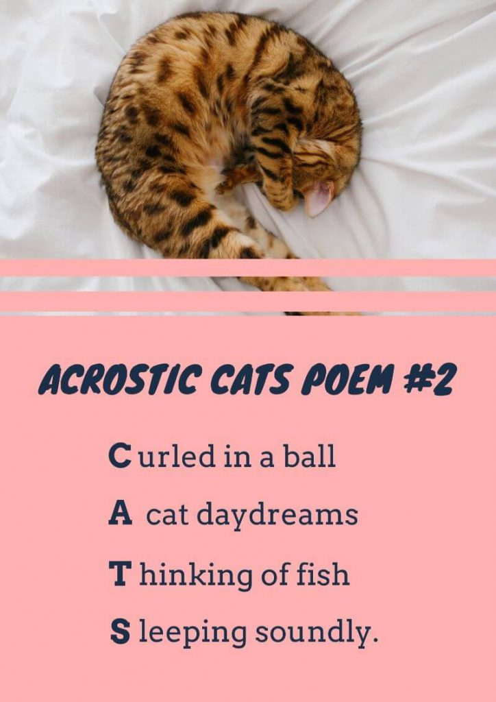 Acrostic poem on cats