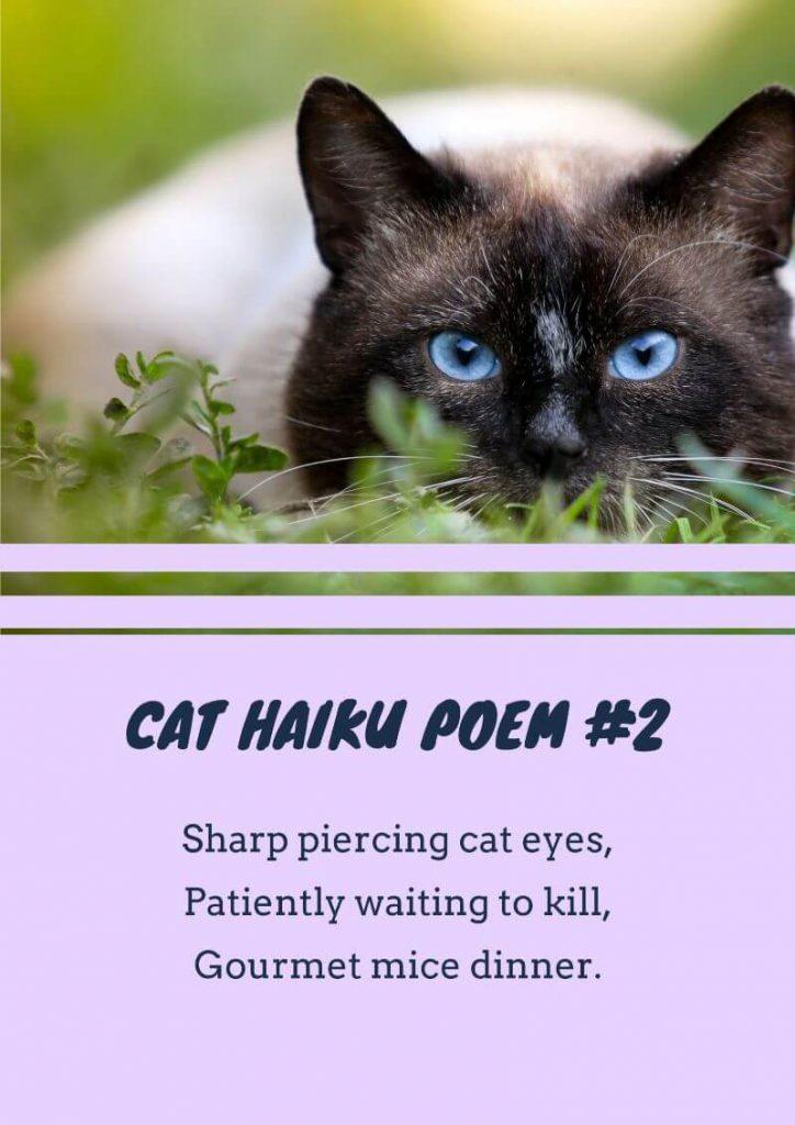 Haiku poems about cats
