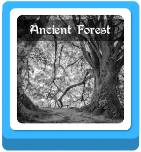 ancient forest name ideas