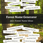 forest name ideas