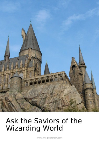 Ask the Saviors of the Wizarding World