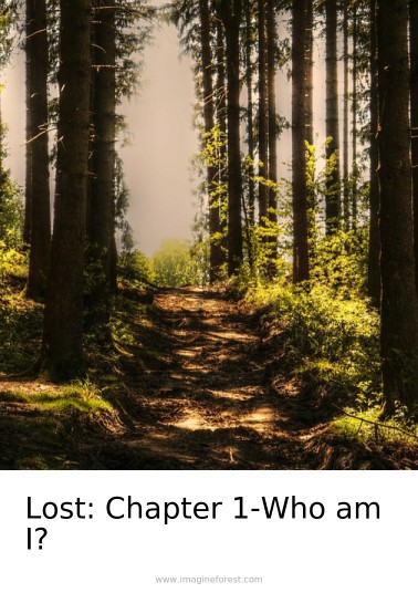 Lost: Chapter 1-Who am I?